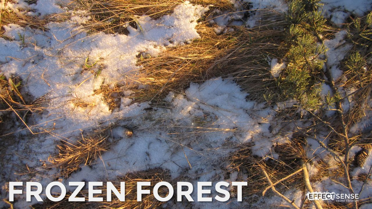 Frozen Forest Footstep Foley Sound Effects