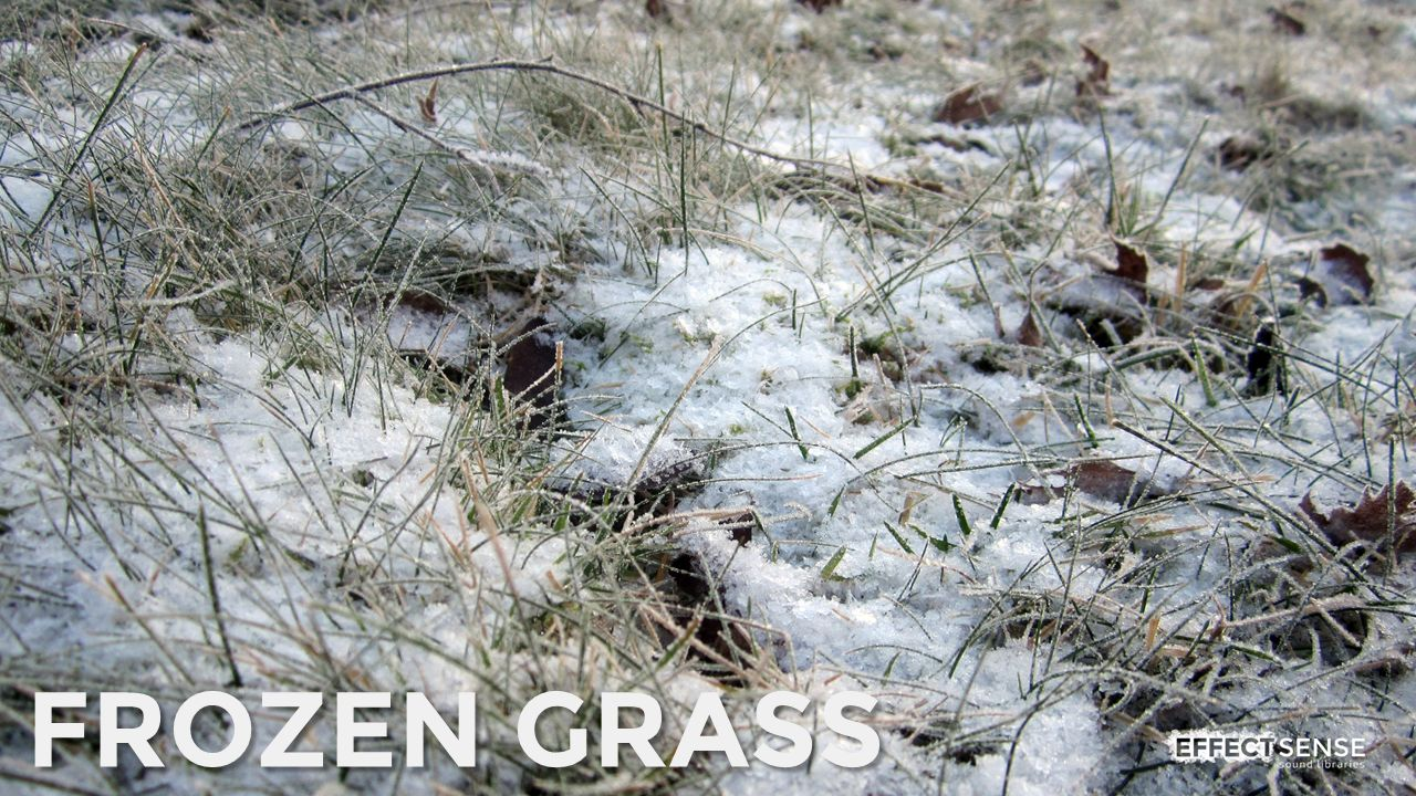 Frozen Grass Footstep Foley Sound Effects